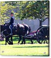 Horse And Caisson Team At Arlington Cemetery Acrylic Print