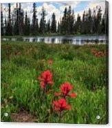 Ibantik Lake Trail Acrylic Print
