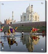 India's Taj Mahal Acrylic Print