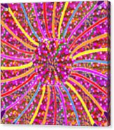 Infinity Star Flower An Abstract Fineart Expression By Navinjoshi At Fineartamerica.com Colorful Spe Acrylic Print
