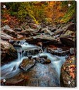 Kaaterskill Creek Acrylic Print