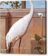 kb Marks Henry-Indian Crane Bullfinch and Thrush Henry Stacy Marks Acrylic Print