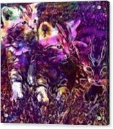 Kittens Cat Cat Puppy Rush  Acrylic Print