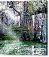 Lake Martin La Acrylic Print