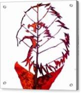 Leafcarving Acrylic Print