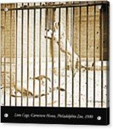 Lion Cage, Carnivore House, Philadelphia Zoo, C. 1900 Acrylic Print