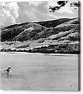 Loch Ness Monster, 1934 Acrylic Print