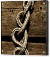 Love Knots Acrylic Print