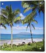 Makena, Maluaka Beach Acrylic Print