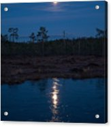 Moon Over Wetlands Acrylic Print