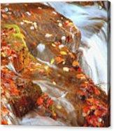 Mountain Stream In Autumn Acrylic Print