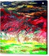 Mt. Norwottuck And Apple Trees Acrylic Print