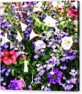 Myriad Colors Acrylic Print