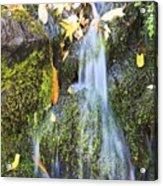 Oregon Cascades, Oregon, Usa Acrylic Print