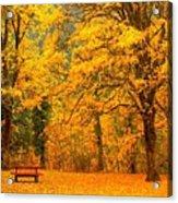 Park Acrylic Print