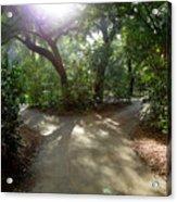 2 Paths  Acrylic Print