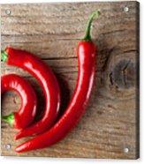 Red Chili Pepper Acrylic Print