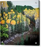 River Through Golden Forest Acrylic Print