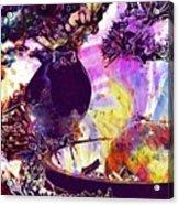 Robin Erithacus Rubecula Bird  Acrylic Print
