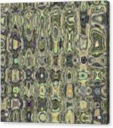 Saguaro Skin Abstract Acrylic Print