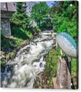 Salmon Hatchery Creek In Mountains Of Alaska Acrylic Print
