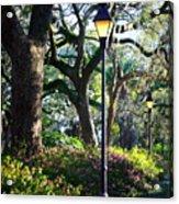 Savannah Spring Perspective Acrylic Print