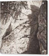 Scala 1892 27h16 Ivan Ivanovich Shishkin Acrylic Print