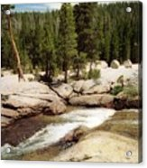 Sierra Nevada Mountain Stream Acrylic Print