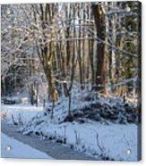 Snowtime Acrylic Print