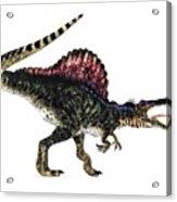 Spinosaurus Dinosaur, Artwork Acrylic Print