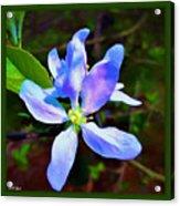 Spring Time Series Painting Acrylic Print