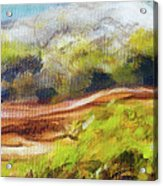 Structure Of Wooden Log Covered With Moss On The Riverside, Closeup Painting Detail. Acrylic Print