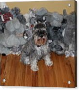 Stuffed Animals Acrylic Print