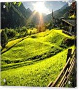 Sunbeam Acrylic Print