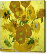 Sunflowers 41 Acrylic Print