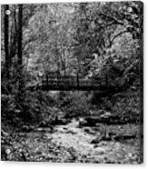 Swan Creek Park Acrylic Print