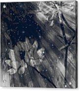 Symbiosis Acrylic Print