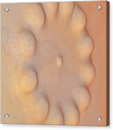 Textures. Gaudi. Acrylic Print