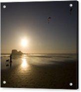 The Flying Ones Acrylic Print