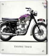 Triumph Trophy Acrylic Print