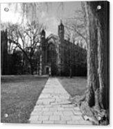 University Of Michigan Law Quad Acrylic Print