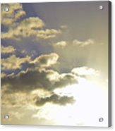 Vuelo Al Sol Acrylic Print