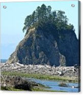 Washington Coast  Acrylic Print