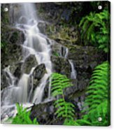 Waterfall In Cradle Mountain Acrylic Print