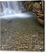 Waterfall, Quebec Acrylic Print