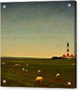 Westerhever Lighthouse Acrylic Print