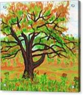Willow Tree, Painting Acrylic Print