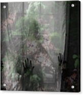 Window Wonder Acrylic Print