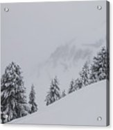 Winter Landscapes Acrylic Print