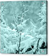 Winter Wonderland In Switzerland Acrylic Print